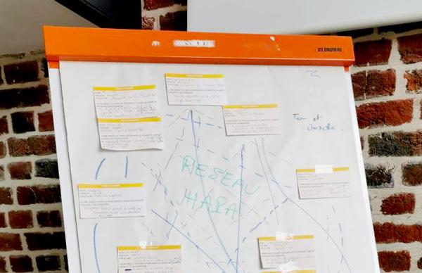 Paper Board de réunions, ateliers du réseau hapa